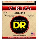 VTA-11 Veritas Acoustic Custom Light