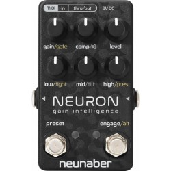 Neunaber Tech Neuron Gain Intelligence