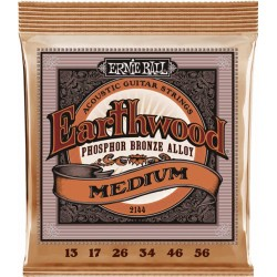 Ernie Ball Earthwood Acoustic