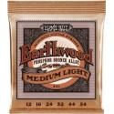 Jeu Earthwood Acoustic Medium Light 12-54