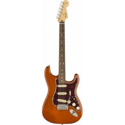 Fender Stratocaster Player PF Aged Natural