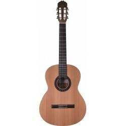 Prodipe Guitare Student 4/4