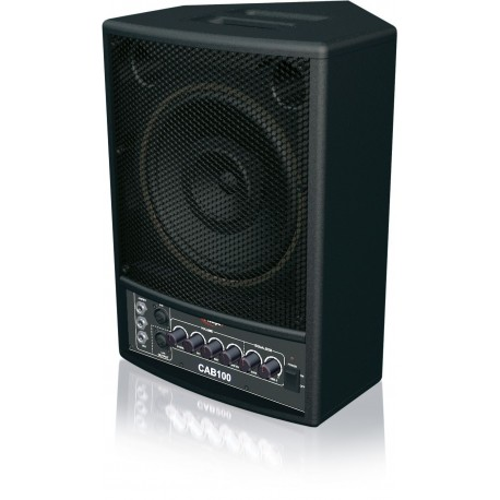 CAB-100 Enceinte Amplifiée 100 Watts